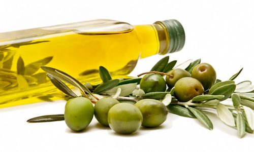 The Importance of Olive Oil